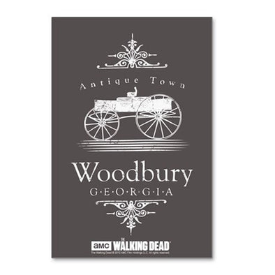 Woodbury Georgia Postcards (package Of 8)