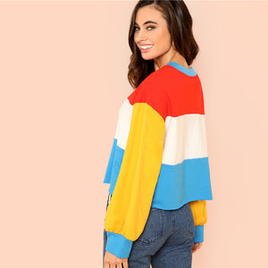 Multicolor Preppy Cut and Sew Women Sweatshirts
