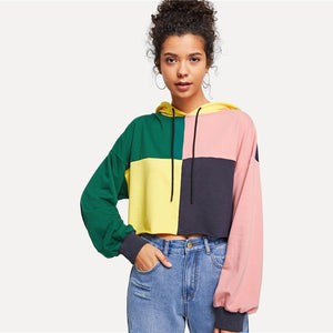 Multicolor Preppy Cut and Sew Hoodie Women Sweatshirts