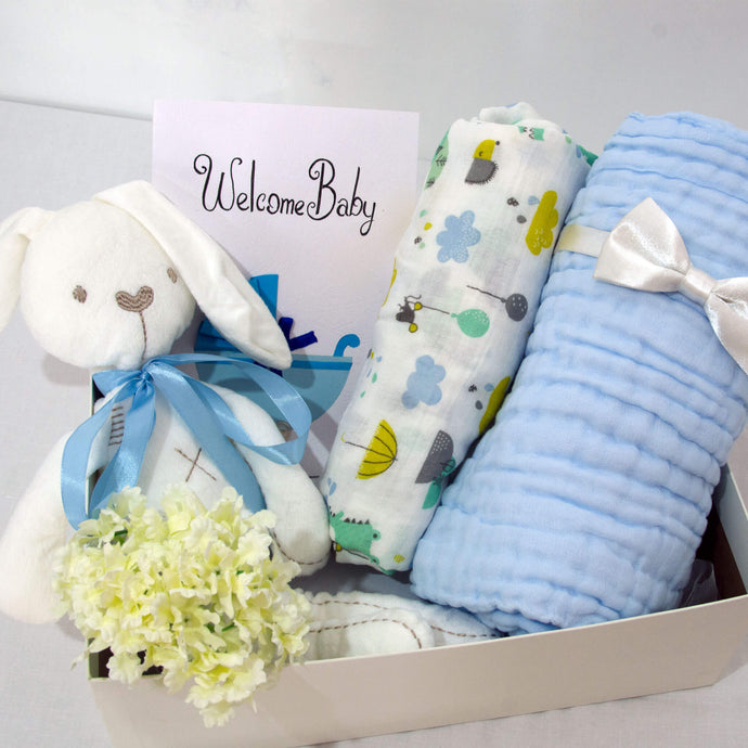 Welcome Baby Hamper - Simple Blue - BabySpace Shop