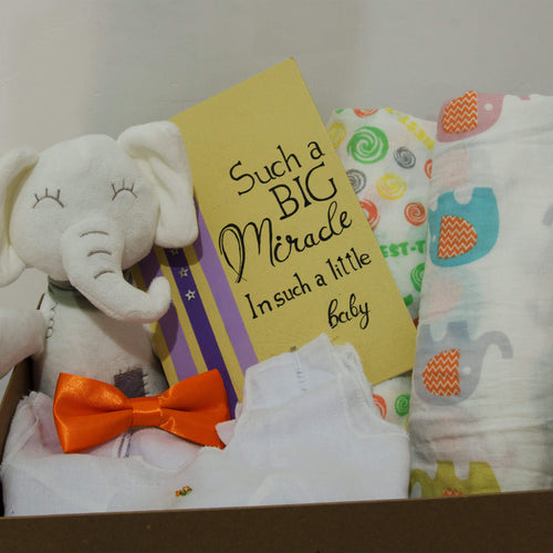 Miracle Baby Hamper - BabySpace Shop