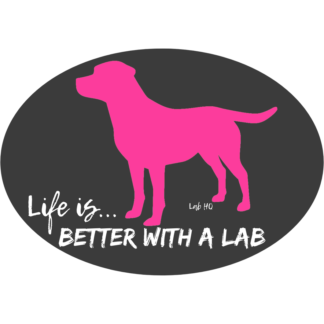 Lab Stickers - Life is Better With A Lab -  Pink & Teal - Labrador Decal  From Lab HQ