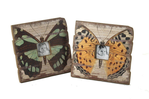Large butterfly frame photo mix by Heaven Sends - ash-dove