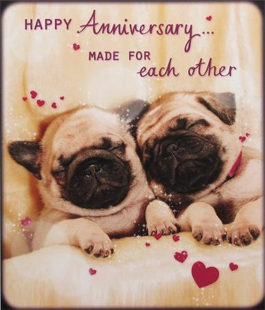 Happy Anniversary Pug Card by Paperlink Greeting Cards Paperlink
