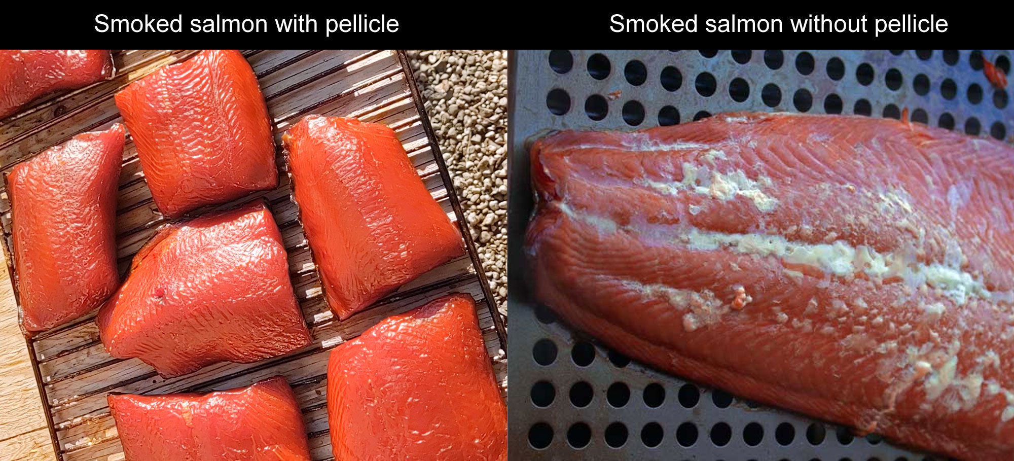 why your smoked salmon needs a pellicle