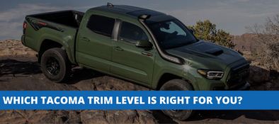 What Is The Difference Between A Toyota Tacoma TRD Sport, Off-Road, and Pro?