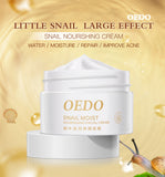Snail Moist Cream - Anti Aging Anti Wrinkle Cream