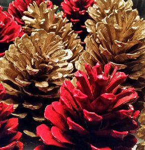 6 Red Pine Cones + 6 gold pine cones One Dozen Painted Pine Cones Holiday Pine