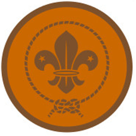 KEA AWARD SCHEME BADGE - BRONZE