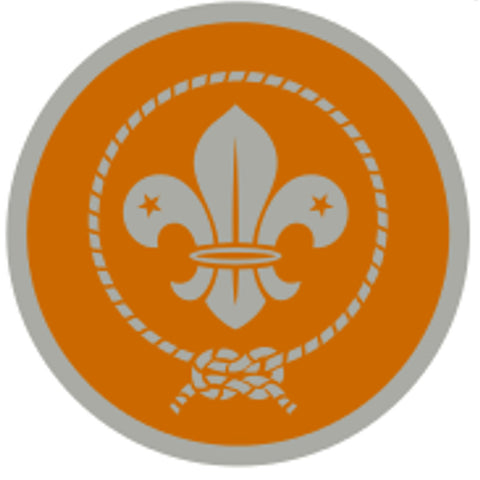 KEA AWARD SCHEME BADGE - SILVER