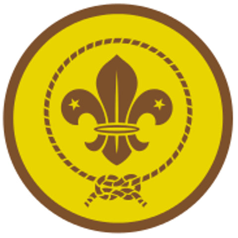 CUB AWARD SCHEME BADGE - BRONZE