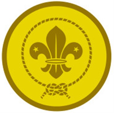 CUB AWARD SCHEME BADGE - GOLD