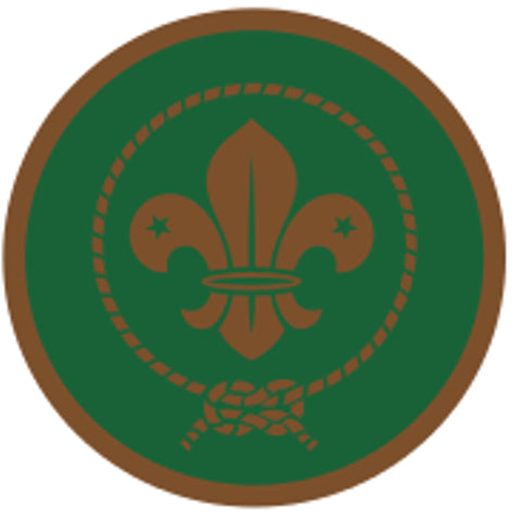 SCOUT AWARD SCHEME BADGE - BRONZE