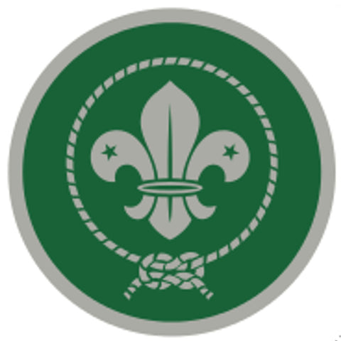 SCOUT AWARD SCHEME BADGE - SILVER