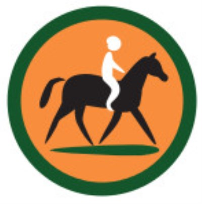 SCOUT BADGE - HORSE RIDING