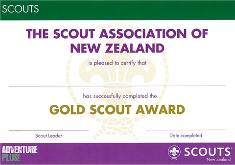 CERTIFICATE - SCOUT AWARD - GOLD