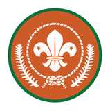 SCOUT AWARD BADGES