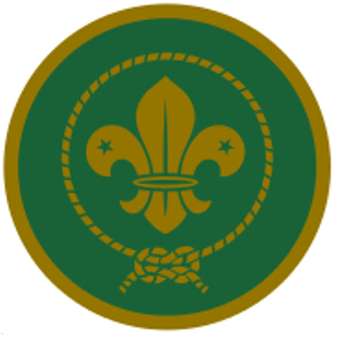 SCOUT AWARD SCHEME BADGE - GOLD