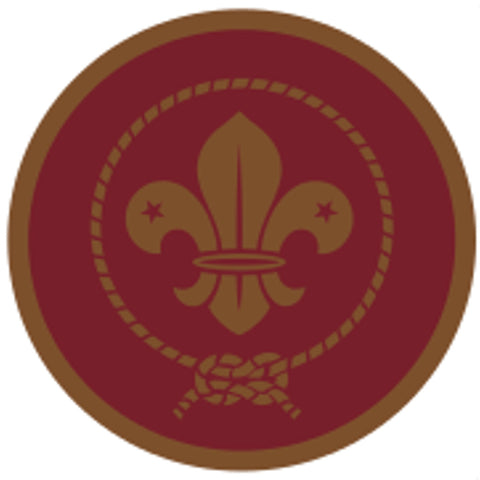 VENTURER AWARD SCHEME BADGE - BRONZE