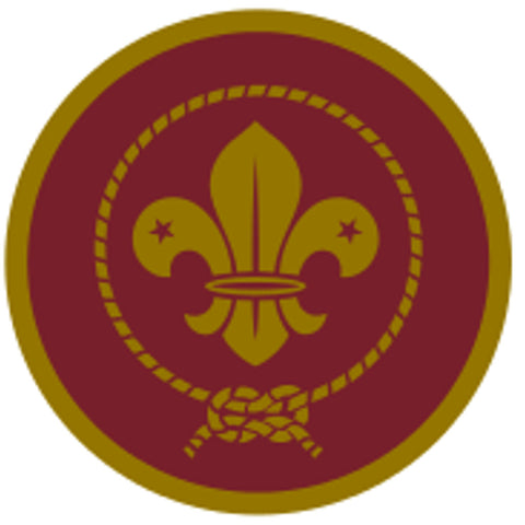 VENTURER AWARD SCHEME BADGE - GOLD