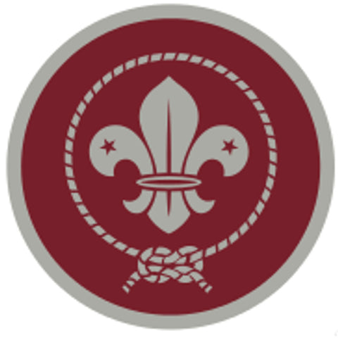 VENTURER AWARD SCHEME BADGE - SILVER