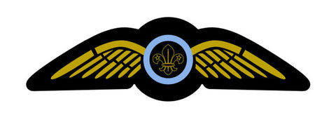WINGS BADGE - RESTRICTED