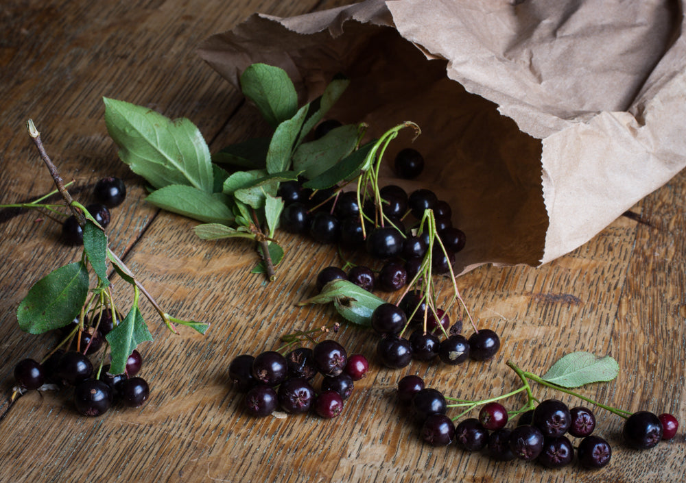 Bringing Awareness With Aronia Berries