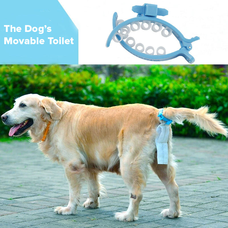 Dog's Movable Toilet