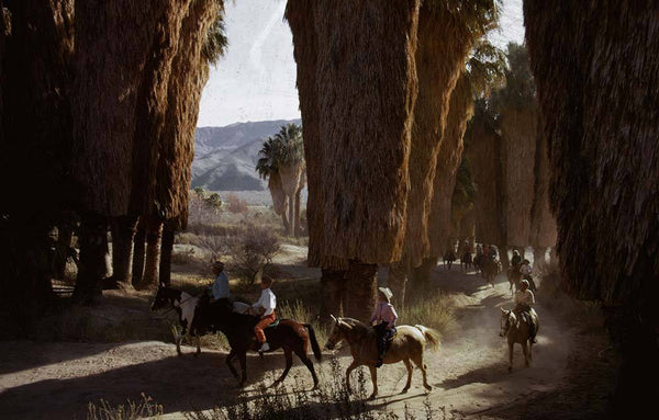 Early Riders by Slim Aarons - FINEPRINT co
