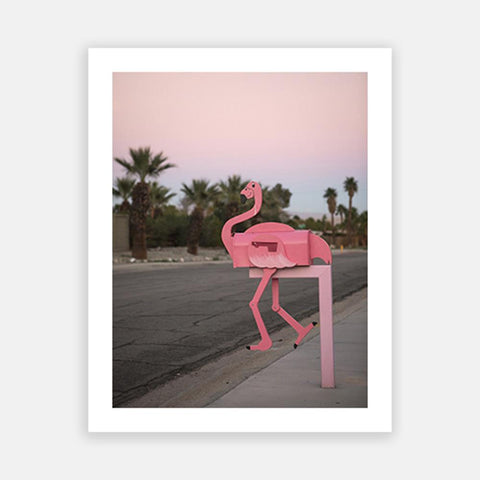 Palm Springs Flamingo
