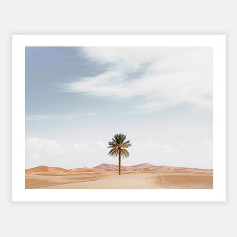 Palm tree in desert landscape by Getty Images - FINEPRINT co