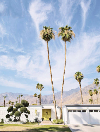 Palm Springs-Gallery Stock-Fine art print from FINEPRINT co