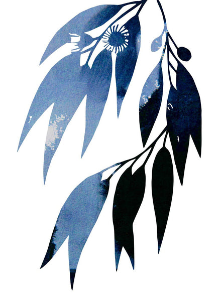 blue-gum-leaves by FINEPRINT co - FINEPRINT co