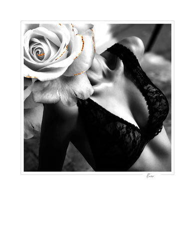 Glamour in rose-Open Edition Prints-Fine art print from FINEPRINT co