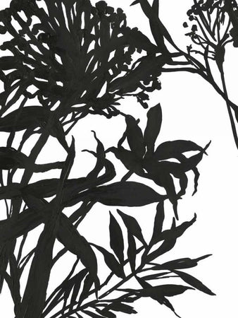 Monochrome Foliage I by POD EXCHANGE - FINEPRINT co