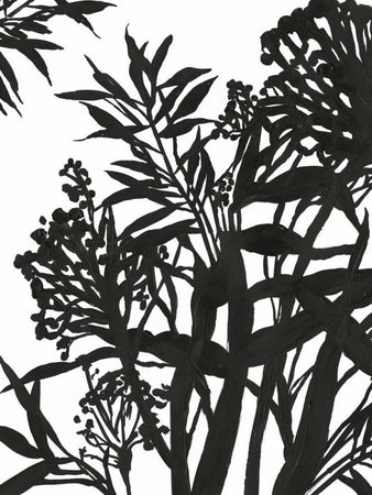 Monochrome Foliage II by POD EXCHANGE - FINEPRINT co