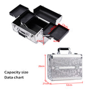 Stagiant Silver Rose Makeup Case