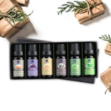 Lagunamoon Essential Oils Top 6 Gift Set - Lavender,Tea Tree,Peppermint,Rosemary,Lemon,Frankincense - Therapeutic Essential Oil 10ml each bottle, 6 Pack
