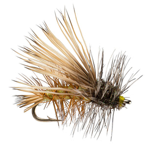 Stimulator Olive - Mossy Creek Fly Fishing