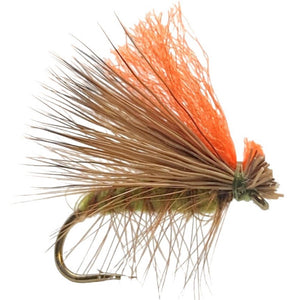 Hot Wing Caddis Olive