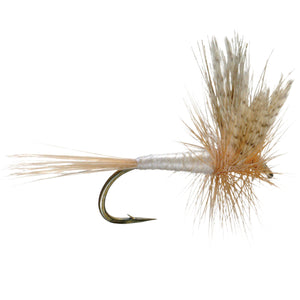 Cahill Light - Mossy Creek Fly Fishing