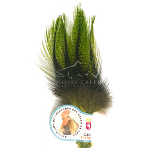 UV2 Perdigon Coq De Leon Feathers - Mossy Creek Fly Fishing