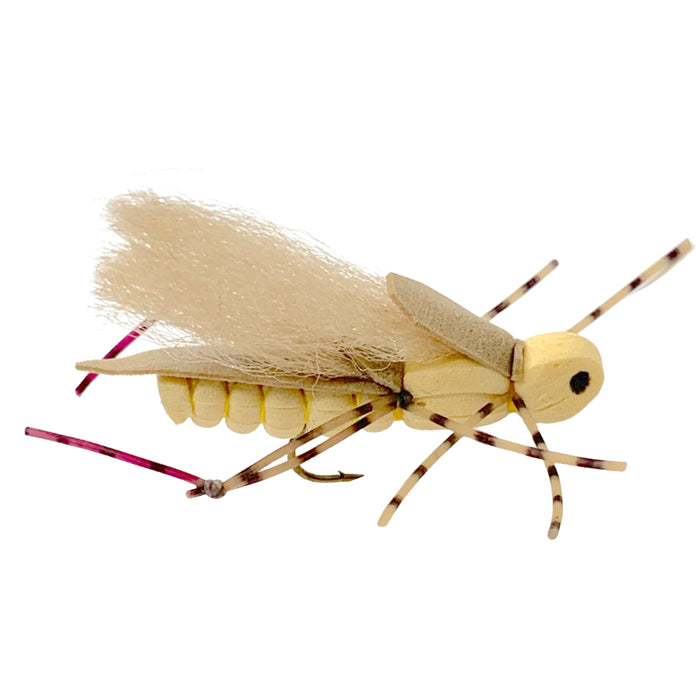 Sweetgrass Hopper