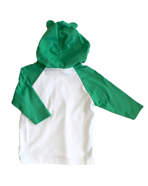 Boys Swim Coverup with Frog Hood Back