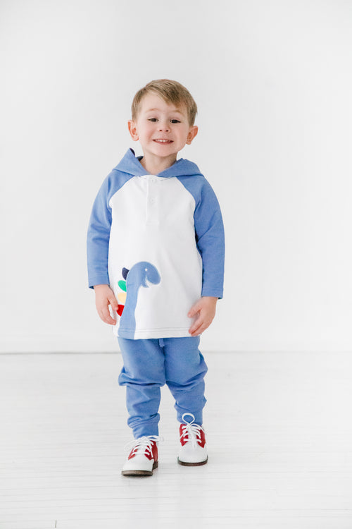 Dinosaur Hoodie Toddler and Baby Boy Joggers Set on Model