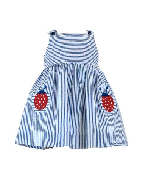 Seersucker Dress With Ladybug