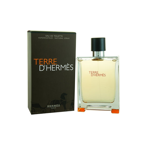 Terre D'Hermes by Hermes EDT 100ml (Men)