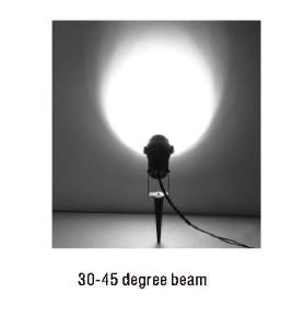 CD75 - Spot Light