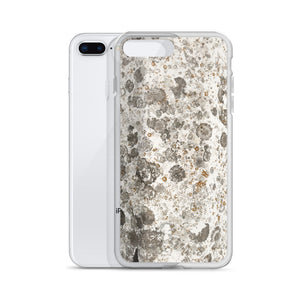 Lichens on Fiberglass Boat Hull iPhone Case