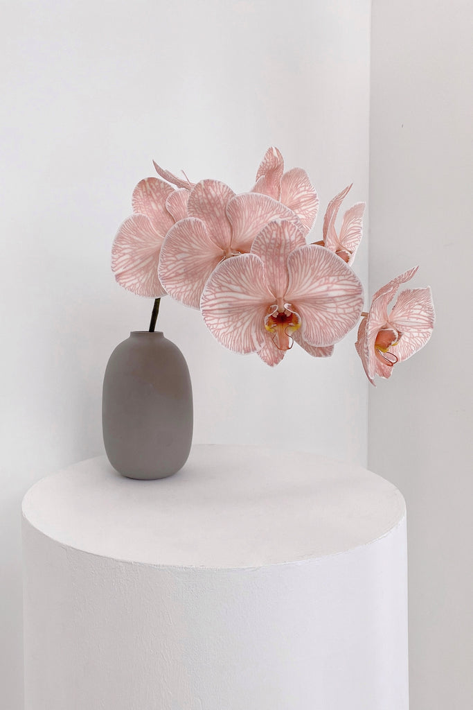 The Florté Florte | Blush Phalaenopsis, Orchids, Table Vase, Best Flowers Singapore, Best Florist Singapore, Best Online Florist